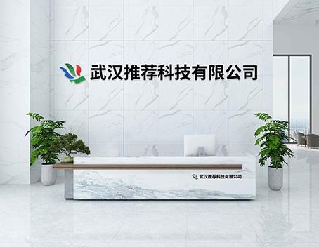武汉推荐科技,你所不知道的一家软件开发公司